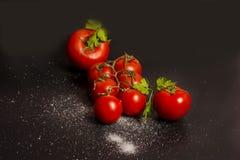 Composizioni nel pomodoro Fotografia Stock