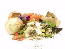 Compost Stock Photography