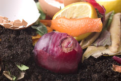 Compost royalty-vrije stock foto