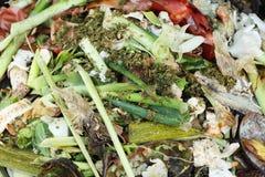 Compost Stock Foto's