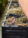 Compost, afval in bak stock afbeelding