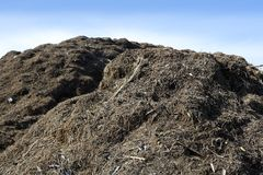 Compost big mountain outdoor ecological recycle Royalty Free Stock Photography