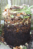 Compost bin with cover removed showing contents. Compost bin with the outer cover removed to show the varying levels of decay of the vegetable matter as you move Royalty Free Stock Image