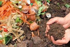 Compost with composted earth Stock Photography