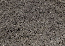 Compost heap Stock Image