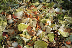 Compost heap Stock Images