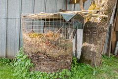 Compost heap with humus in a garden.  Stock Image