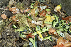 Compost heap Royalty Free Stock Images