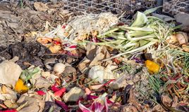 Colorful compost pile. Compost heaps with garden waste and kitchen waste such as vegetable peel, fruit bowls, flowers, coffee filters and eggshells Stock Photos