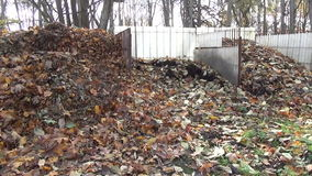 Compost leaves pile stock footage