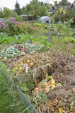 Compost Pile. In a vegetable garden Royalty Free Stock Images
