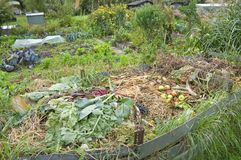 Compost Pile. In a vegetable garden Royalty Free Stock Image