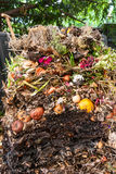 Compost pile. Household compost pile opened up Stock Images
