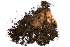 Compost Royalty Free Stock Photos