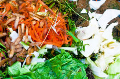 Compost. Vegetable residues on a compost bin Stock Image