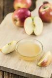 Composta di mele fatta fresca Immagine Stock Libera da Diritti