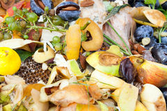 Compostbak Royalty-vrije Stock Afbeeldingen