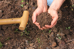Composted earth with hands Stock Photos