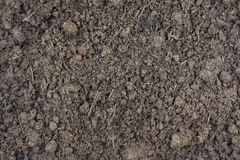 Composted steer manure background Stock Image
