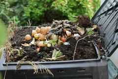 Composter Stock Images