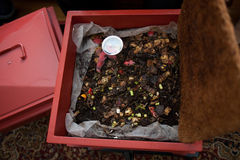 composting Imagens de Stock