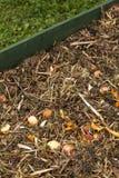 composting fotografie stock libere da diritti