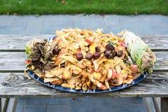 composting immagine stock