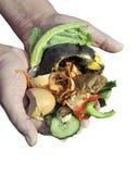 composting immagine stock libera da diritti