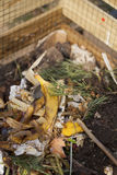 composting immagini stock