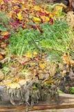 composting av högen Fotografering för Bildbyråer