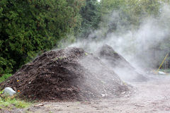 Composting or Compost Heap. A large pile of debris decomposes in the sun Royalty Free Stock Images