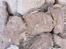 Composting för gödsel arkivfoto