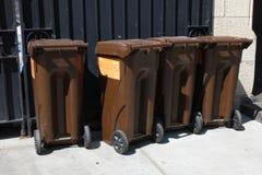 Composting i New York City royaltyfri bild