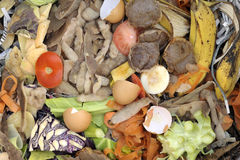 Composting materials. Mixture of composting materials comprising fruit and vegetable kitchen food waste with shredded newspaper Stock Image
