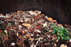 composting pile of vegetables fruits. Concept Organic waste, clean environment royalty free stock photo