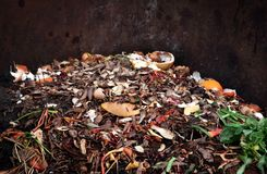 composting pile of vegetables fruits. Concept Organic waste, clean environment stock photo