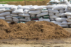 Composting som är ekologisk i lantgård Royaltyfri Foto