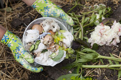 Composting Royalty Free Stock Images