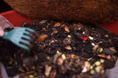 Composting Royalty Free Stock Photography