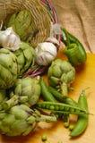 Compostions de fruits et légumes Images libres de droits