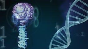 Composto di Digital del codice genetico del cervello illustrazione di stock