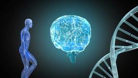 Composto di Digital di un umano, del cervello e del codice genetico illustrazione vettoriale