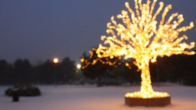 Composttion borroso de las luces del oro en el árbol de navidad almacen de metraje de vídeo