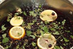 Compota de Chernoplodki com limão e hortelã Imagens de Stock Royalty Free