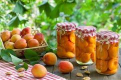 Compote Apricote Στοκ εικόνες με δικαίωμα ελεύθερης χρήσης