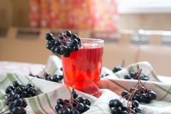 Compote of black chokeberry Royalty Free Stock Photos