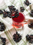Compote of black chokeberry Royalty Free Stock Image