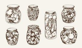 Compote et conserves au vinaigre illustration stock