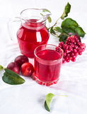 Compote of fresh fruit Stock Photos