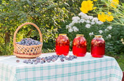 Compote home canning and basket with plums Royalty Free Stock Images